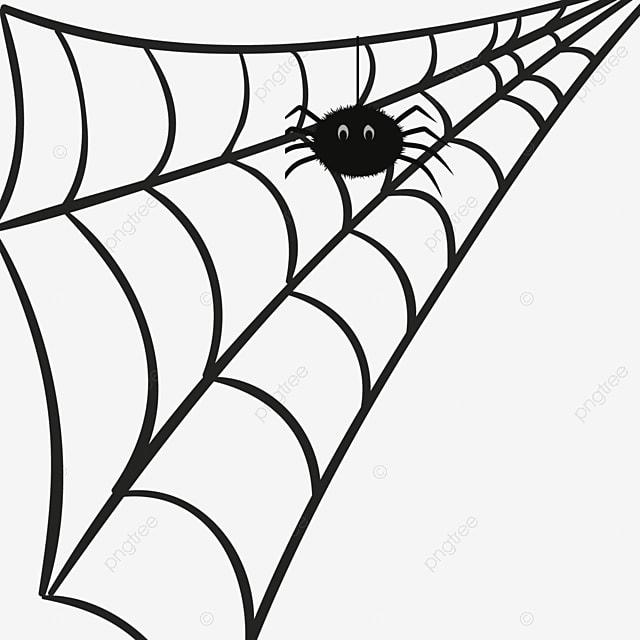 Spider Web Pattern Cartoon Pictureshand Painted Cartoon Cobweb