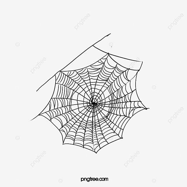 spider web spider web pattern image spider clipart sketch