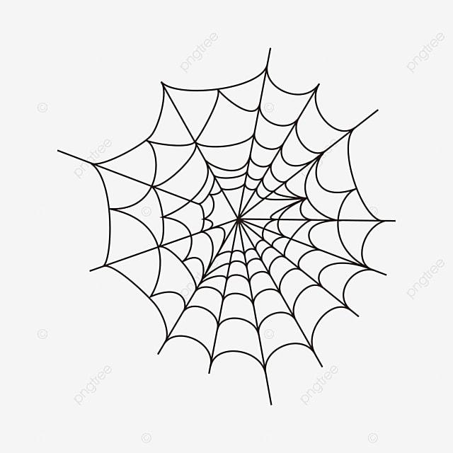 Creative Cartoon Spider Web Spider Web Icon Cartoon Clipart Spider