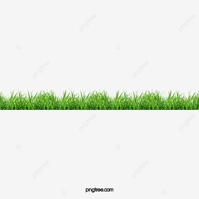 cesped verde planta archivo png y psd para descargar gratis