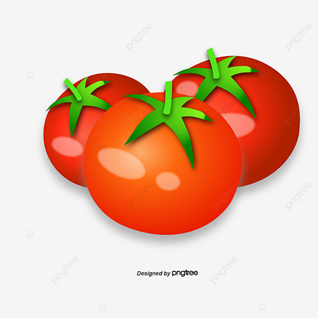 Tomato cartoon tomato vector png and vector with transparent background for free download - Tomate dessin ...