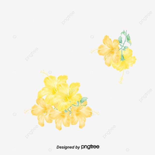الوردة الصفراء الوردة الصفراء صور وردة Png وملف Psd للتحميل مجانا