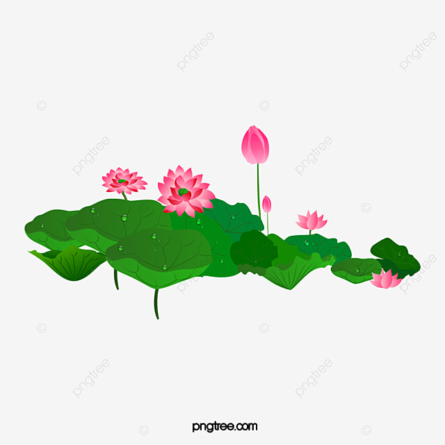 Lotus flower green lotus bloom png and psd file for free download lotus flower green lotus bloom png and psd mightylinksfo