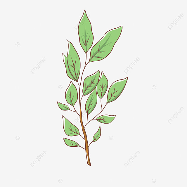 Leaves,New leaves,green, New Leaves, Soil, Leaves Vector ...