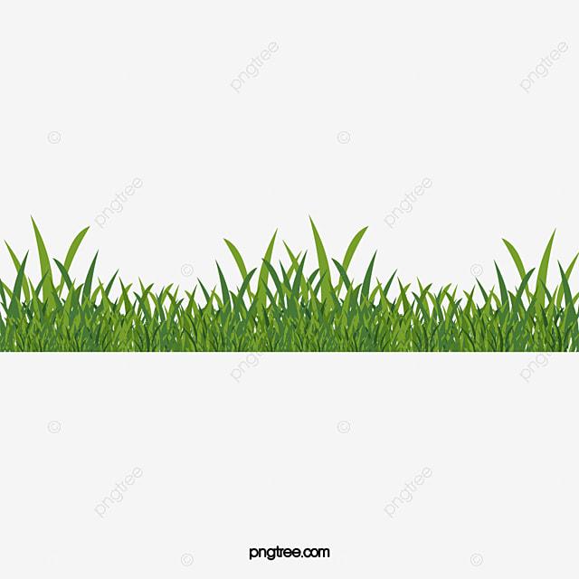 de l herbe verte vert de l herbe le dessin de l herbe png