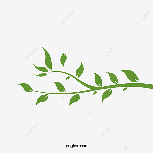 Fresh Green Leafy Vine Leaves Clipart Png Image And