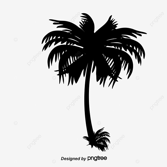 Coconut Trees Silhouette Clipart Coco Black And White PNG Image