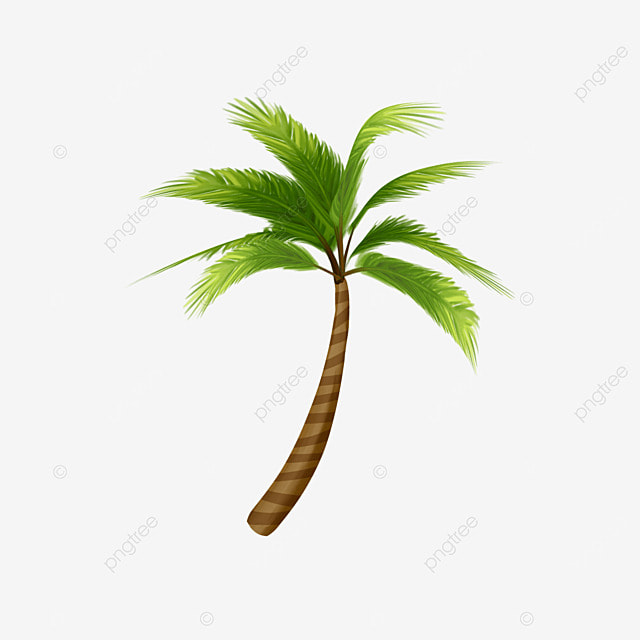 Coconut tree png images vectors and psd files free download on coconut tree toneelgroepblik Gallery