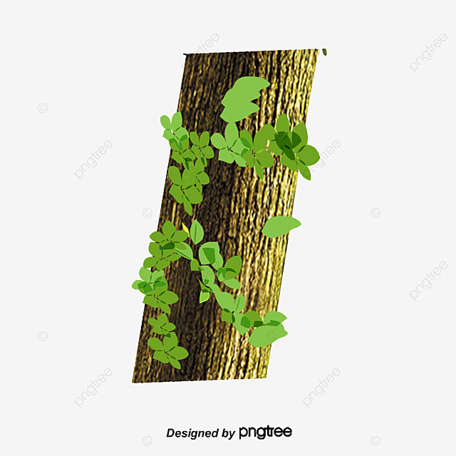 trees  tree  trunk png clipart image and psd file for free