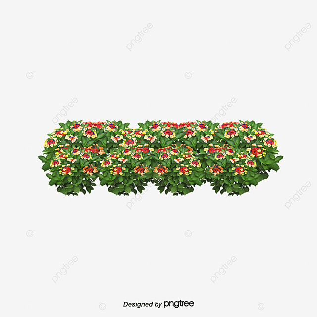 Arbusto flores arbusto flores archivo png y psd para for Arbustos con flores