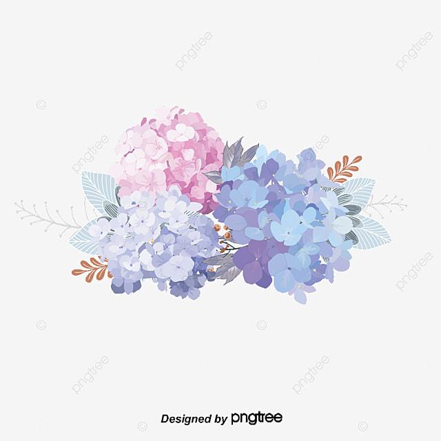 Elegant floral pattern, Flower Cluster, Potpourri, Elegant PNG and Vector