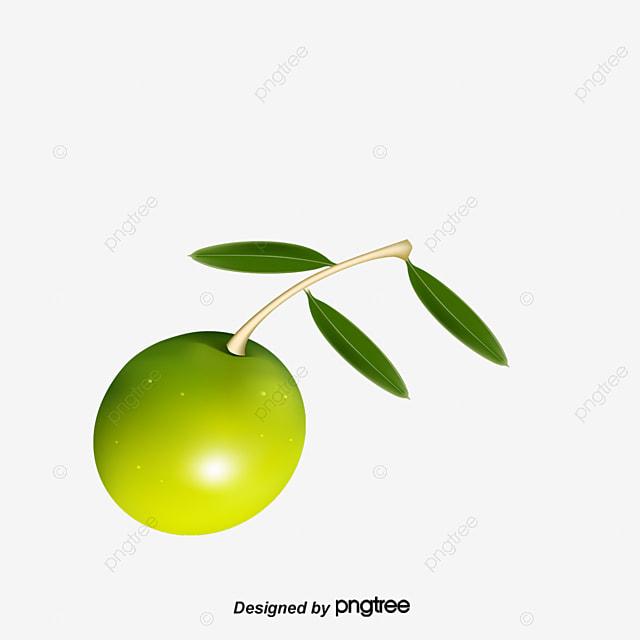 Olives, Olives Labels, Green Olives PNG and Vector