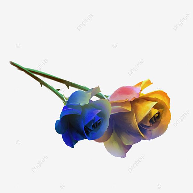 Rosas Amarillas Rose Amarillo El Día De San Valentín Imagen Png Para