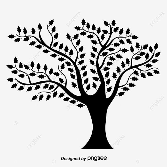 dessin d arbres  u00e0 feuilles dessin les arbres les feuilles fichier png et psd pour le
