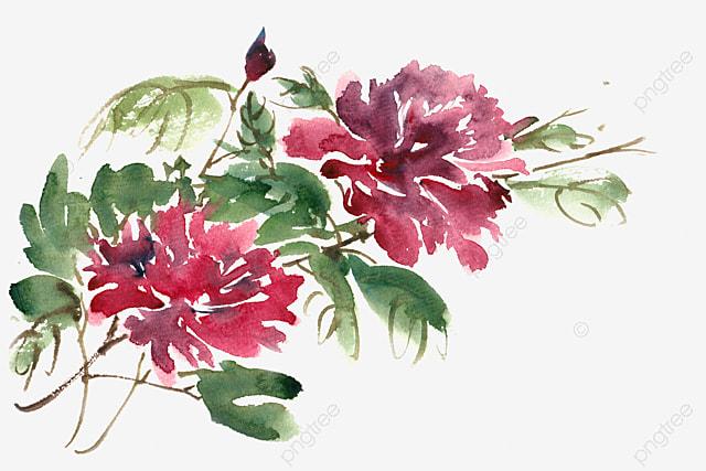 Fleurs d aquarelle aquarelle fleur les fleurs image png for Aquarelle fleurs livraison gratuite
