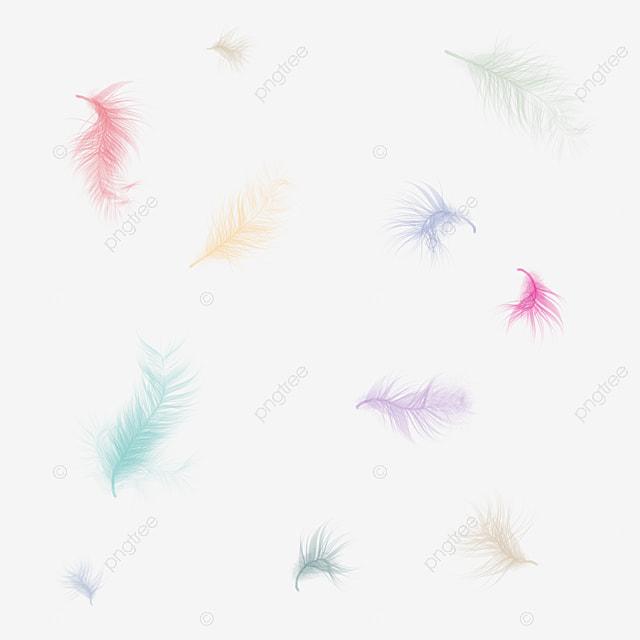 Plumas De Colores, Color, Pluma, Creative Imagen PNG para Descarga ...