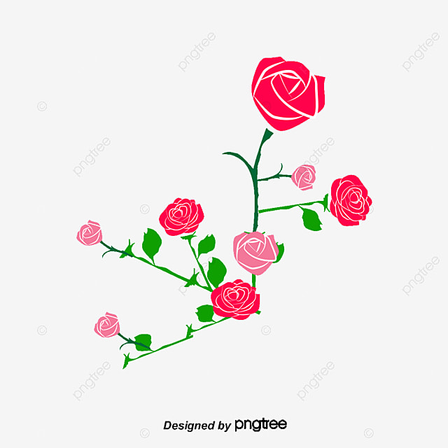 Rose Pink Roses Frame Png And Psd File For Free Download