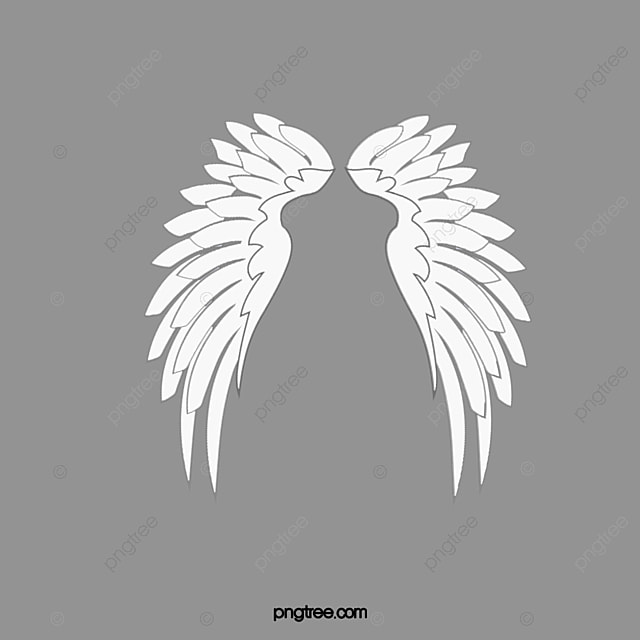 angel wings  white wings  feather wings png image and angel wings clip art free download angel wing clipart in black