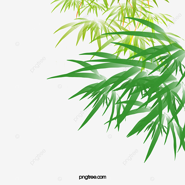 bamboo png images vector and psd files free download on pngtree bamboo png images vector and psd