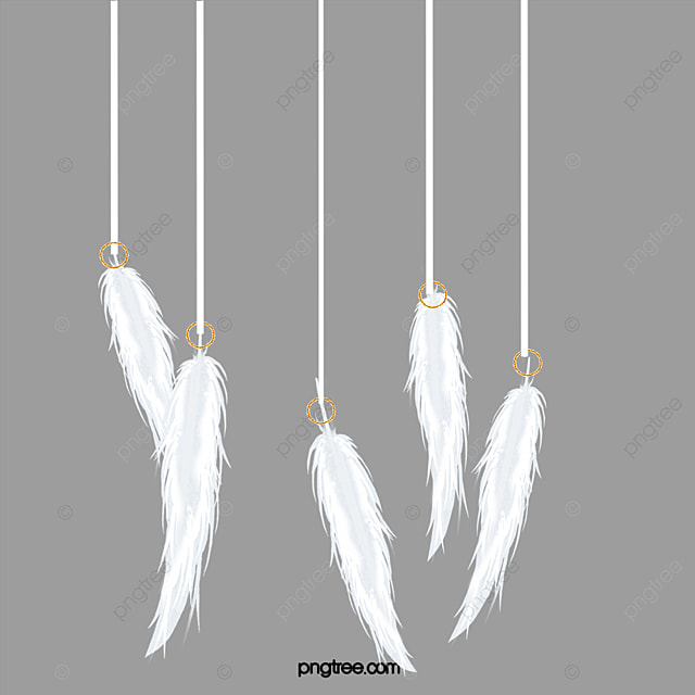 falling feathers png - 650×568