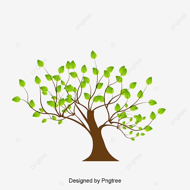 tree cartoon tree vector tree png image and clipart for free rh pngtree com free vector tree art free vector tree art