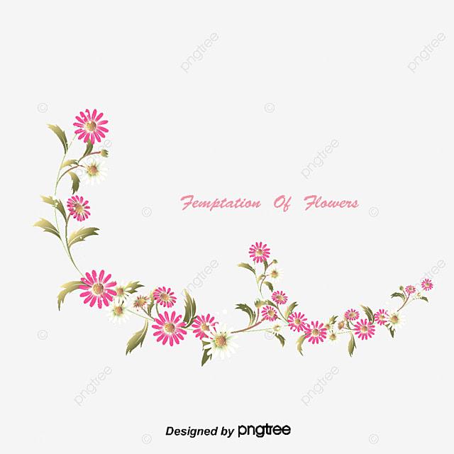 de petites fleurs blanches de petites fleurs blanches