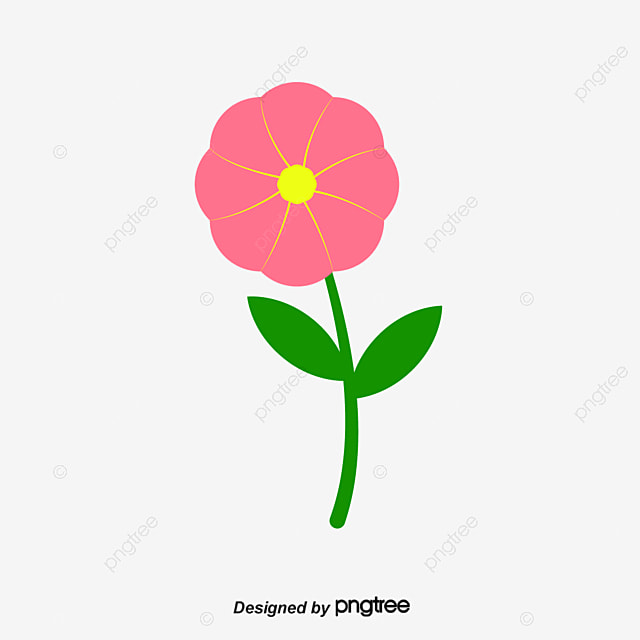 Flower Dibujo: Flores Flores Dibujos De Flores Hermosas Flores PNG Y