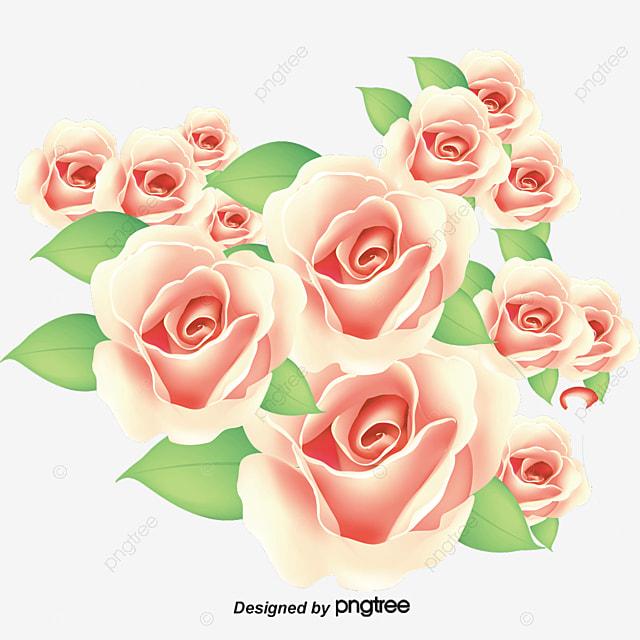 Самсунг клипарт букеты роз купить цветы доставка