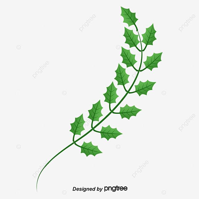 ub098 ubb47 uac00 uc9c0   uc790 uc720 ud615   ub098 ubb47 uc78e   ub098 ubb47 uac00 uc9c0  ubb34 ub8cc  ub2e4 uc6b4 ub85c ub4dc ub97c uc704 ud55c png  uc774 ubbf8 uc9c0 clip art leaf patterns for applique clip art leaf images