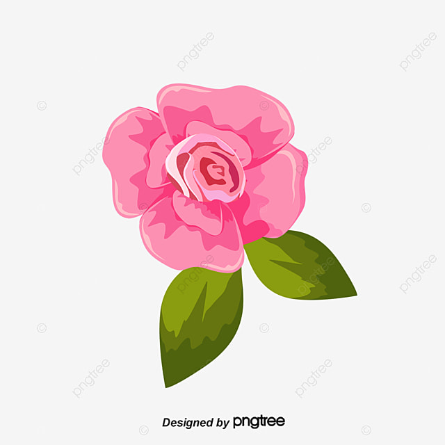 Hand Painted Watercolor Flower Pink Watercolor Clipart Flower