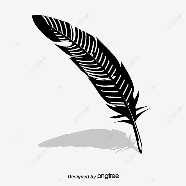 vector black and white feathers black and white feather