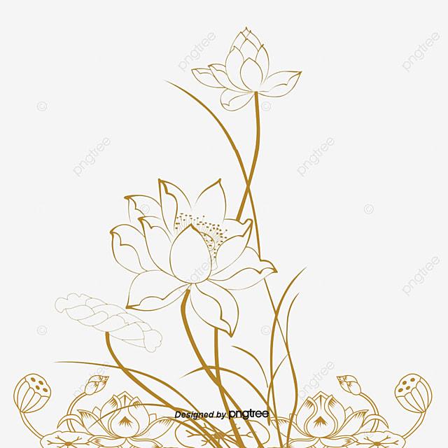 Lotus Flower Line Drawing Vector Free Download : Lotus vector artwork png and