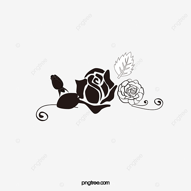 Rose Rose Vector Rose Clipart Png And Vector For Free Download