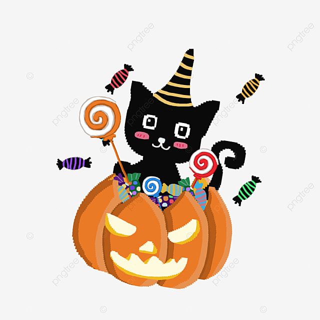 Black Cat Pumpkin, Black Cat, Pumpkin, Halloween PNG Image And Clipart