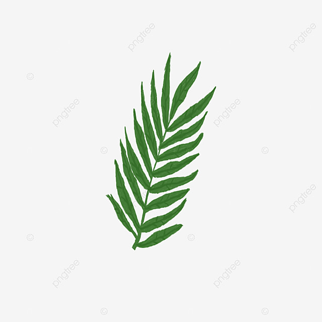 Leaf Design Vector Logo