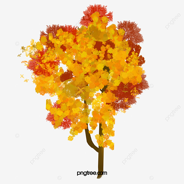 drawing the tree  watercolor  tree  plant png and vector