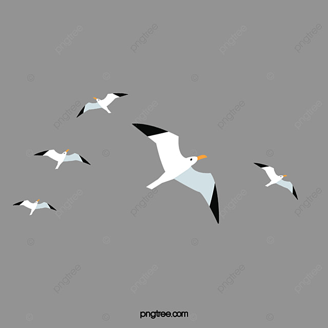 flock of birds  bird  flying bird png image and clipart for free download graphic clip art images graphic clip art printable