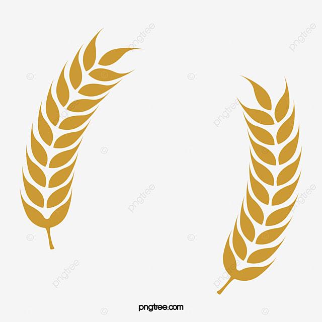 無料ダウンロードのための稲穂小麦米 大麦 米 稲png画像素材