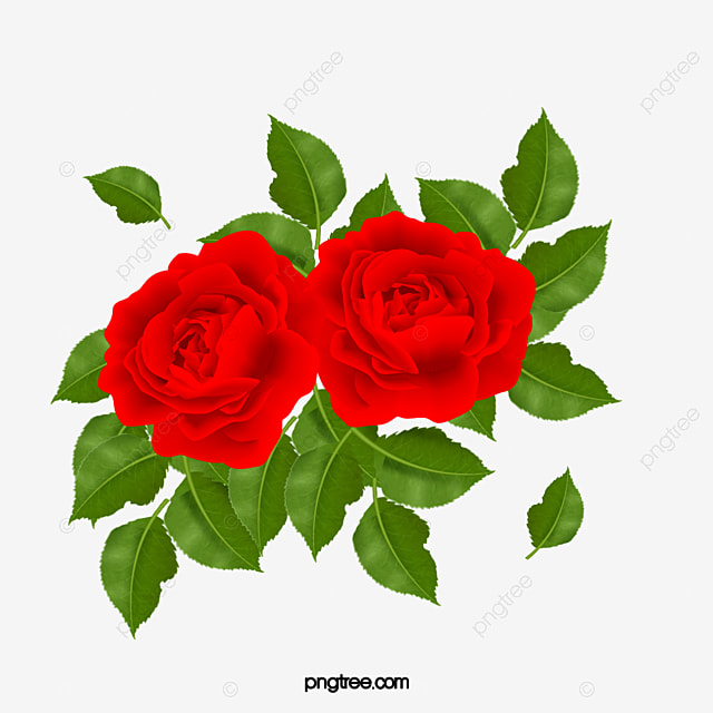 téléchargement gratuit MV un rose vous