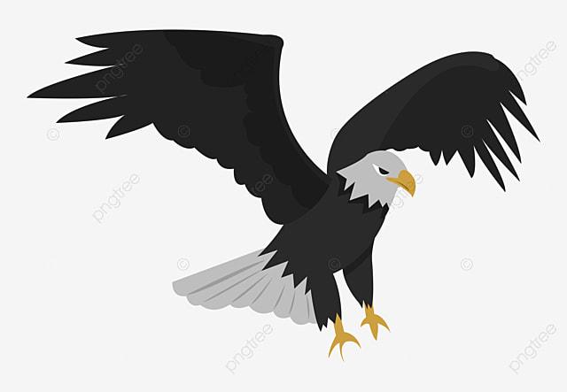 eagle  a  u00e1guia png imagem para download gratuito clip art bird bath clip art birds free