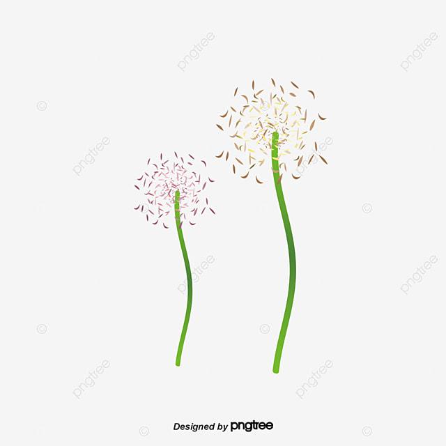 Лаванда Бумажный Цветок Фиолетовый  лаванда png скачать
