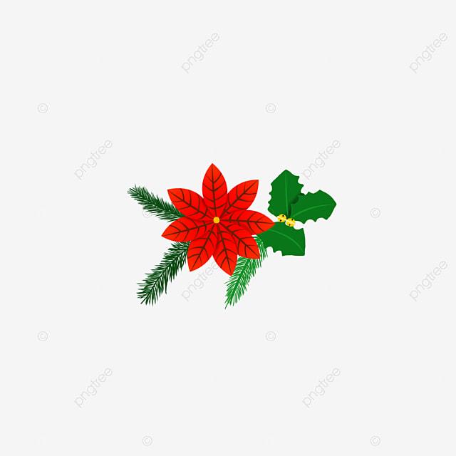 Flor De Navidad Exquisito, Marco De La Frontera, Refinamiento ...
