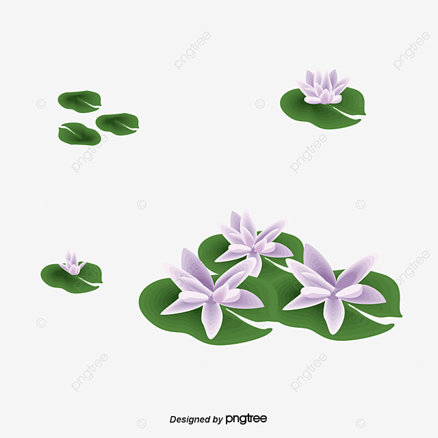 korea flower png images vectors and psd files free download on