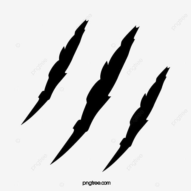 des marques de griffes  u00e9gratignure fissure trace image png