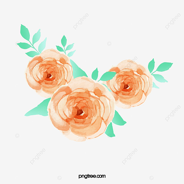 Orange Painted Pattern Of Roses Clipart Watercolor Flowers Border PNG