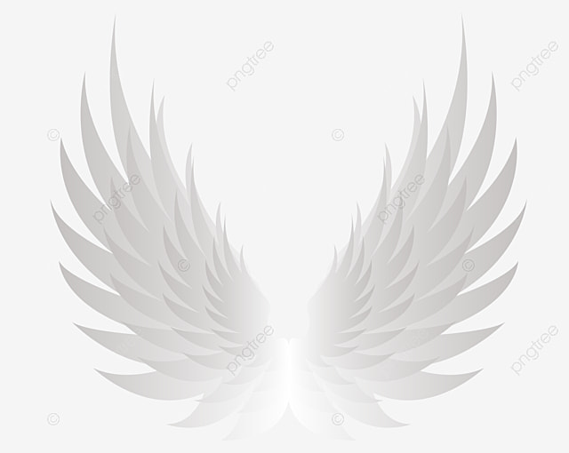 des ailes d ange blanc blanc ange des ailes image png pour le t u00e9l u00e9chargement libre
