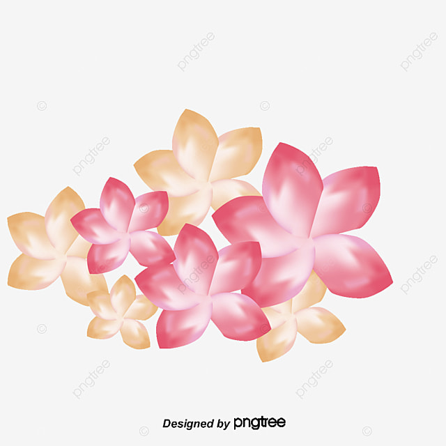Plumeria Flowers Pattern Png And Vector For Free Download