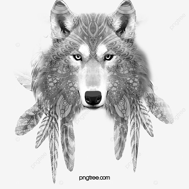 Wolf Wolf Clipart Sketch PNG Image And Clipart For Free Download