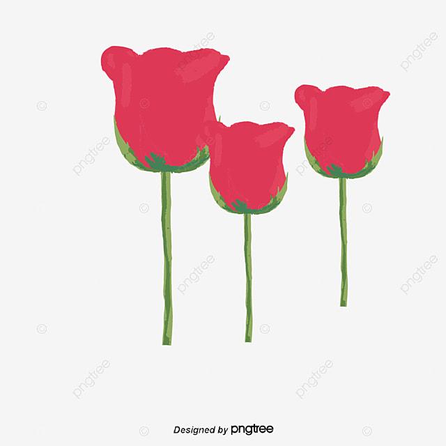 Poppy beautiful poppy flowers poppy vector png and vector for free poppy beautiful poppy flowers poppy vector png and vector mightylinksfo