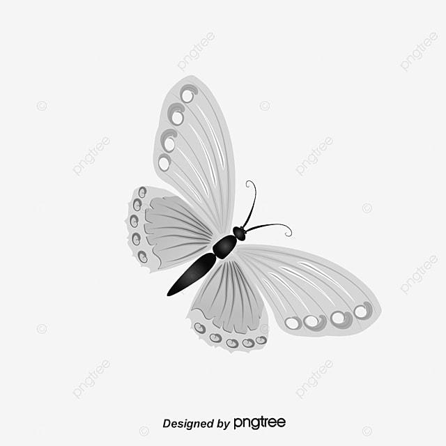 Decorative pattern white flowers background png and psd file for decorative pattern white flowers background png and psd mightylinksfo